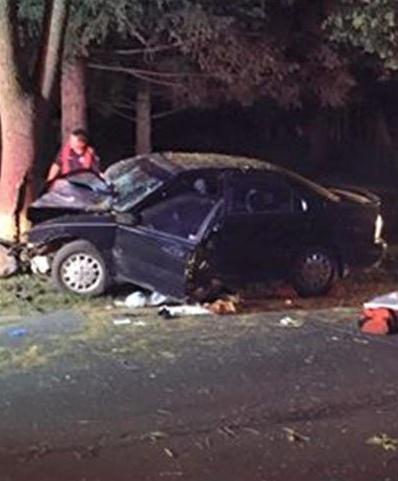 Chiếc ô tô đâm vào gốc cây vì người lái mải chơi Pokemon Go.