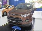 Ford EcoSport bị thu hồi vì lỗi hệ thống treo sau