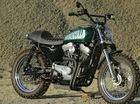 Nữ nhà báo biến Harley-Davidson Sportster thành xe scrambler