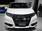 Honda Odyssey tiết kiệm xăng xuất hiện thầm lặng