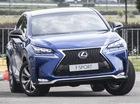 Lexus NX vừa ra mắt ở Việt Nam thì có tin triệu hồi tại Malaysia