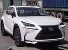 Cận cảnh SUV hạng sang tiền tỷ Lexus NX 200t tại Việt Nam