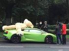 Chở gấu bông trên nóc xe, Lamborghini Gallardo bị phạt