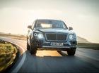 """Bentley """"chật vật"""" thỏa mãn nhu cầu của khách nhà giàu"""