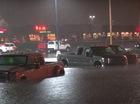 """Đại lý chìm trong nước lũ, 105 chiếc xe Ford """"chết đuối"""""""