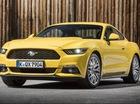 """Muốn mua """"ngựa hoang"""" Ford Mustang thì phải chờ nửa năm"""