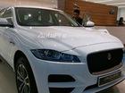SUV hạng sang Jaguar F-Pace đã về Việt Nam, ra mắt vào tháng sau