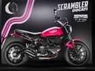 Ducati gây choáng với Scrambler Sixty2 màu hồng