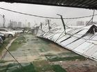 Giao thông Hà Nội hỗn loạn vì bão số 1: Cây đổ, nhà tốc mái, xe cộ ngổn ngang