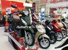 """Xe máy """"đội giá"""" đón Tết, Honda SH tăng 20 triệu Đồng"""