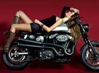 Cô nàng chất lừ bên Harley-Davidson Sporter XL1200