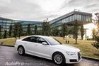 Audi A6 1.8L 2015 - Xe sang tiết kiệm xăng