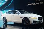 Chưa có giá chính thức, Jaguar XF hoàn toàn mới vẫn nhận được 15 đơn đặt hàng