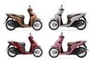 37.500 chiếc Honda Vision được bán ra tại Việt Nam mỗi tháng