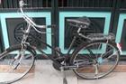 'Huyền thoại' xe đạp Phượng Hoàng trở lại, giá 4 triệu Đồng