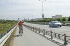 Người dân thong dong đạp xe trên cao tốc Long Thành - Dầu Giây