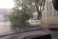 Mưa lớn tại Sài Gòn giữa mùa khô, cành cây đổ trúng xe sang Mercedes-Benz S-Class