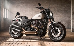 Chạy doanh số Tết, Harley-Davidson hạ sốc hơn 100 triệu đồng cho loạt mô tô khủng