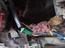 Kinh hoàng chuột làm tổ, sinh sản trong xe máy