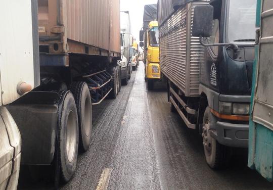 Lái xe đông lạnh khóc ở khu vực cảng Cát Lái - Ảnh 2.
