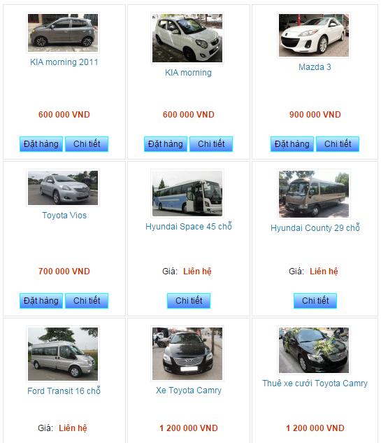 Sôi động thị trường cho thuê xe tự lái trên mạng dịp Tết - Ảnh 4.