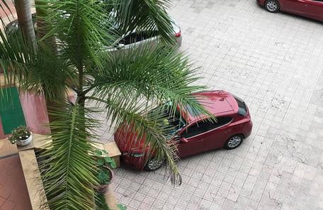 Cẩn thận không thừa: Một khi chị em đã đỗ ô tô thì cái logo cũng đừng hòng lấy! - Ảnh 1.