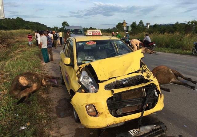 Lực lượng chức năng có mặt tại hiện trường vụ tai nạn.