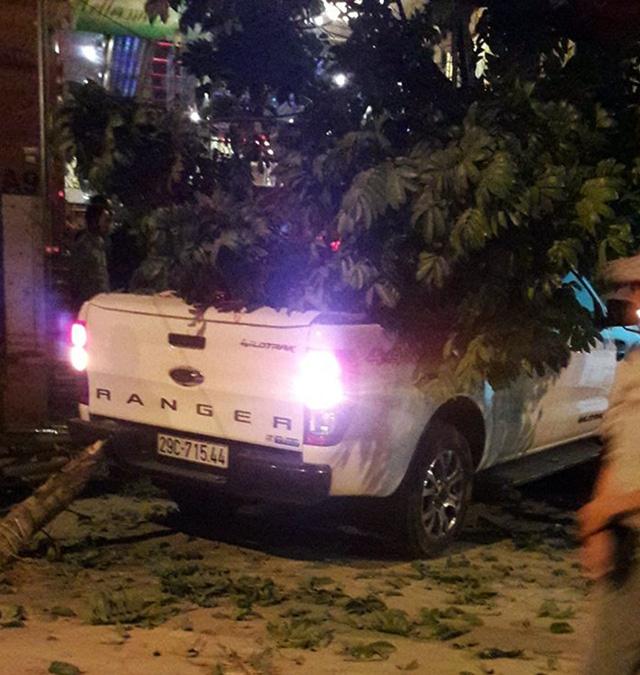 Chiếc bán tải tông đổ cây xanh trên vỉa hè. Ảnh: Việt Yên