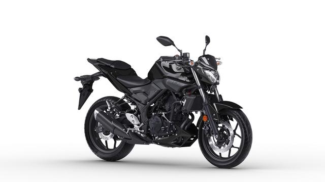 Yamaha nâng cấp cặp đôi mô tô MT-03 và YZF-R3 - Ảnh 1.