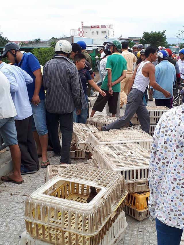 Ninh Thuận: Xe tải chở gà đâm sập lan can cầu, lao xuống sông - Ảnh 3.