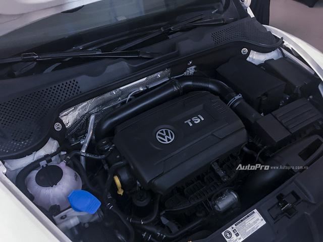 Volkswagen mạnh tay đưa Beetle Dune và Passat BlueMotion về Việt Nam - Ảnh 3.