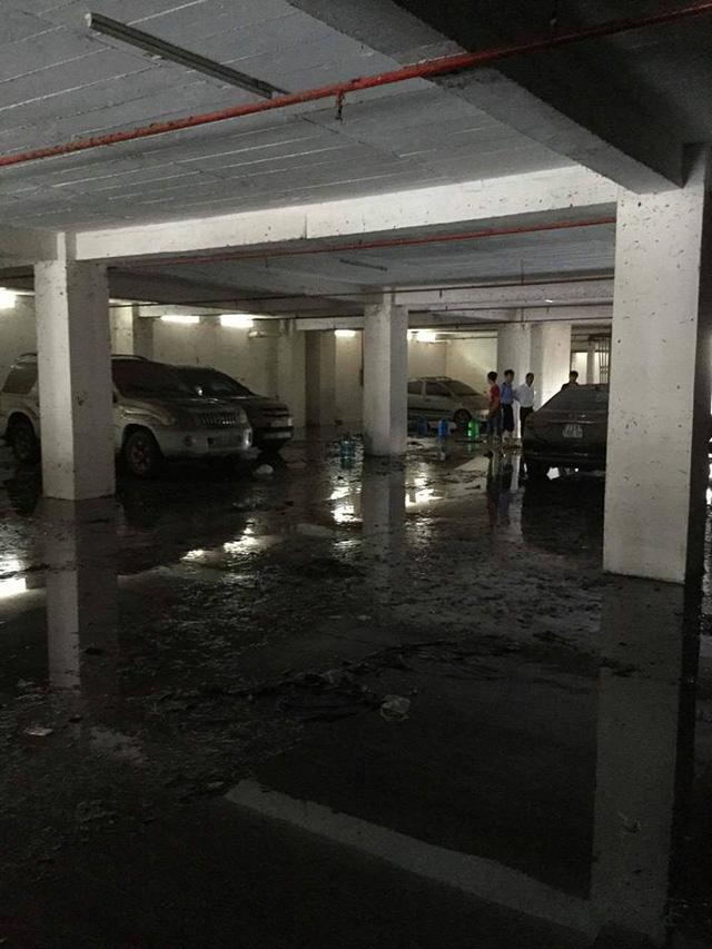 Mưa lớn kéo dài tại Bà Rịa - Vũng Tàu khiến hàng loạt ô tô chết đuối trong hầm chung cư - Ảnh 5.