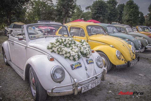 Chiêm ngưỡng dàn bọ già Volkswagen Beetle đủ sắc màu tại Hà Nội - Ảnh 1.