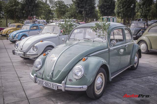 Chiêm ngưỡng dàn bọ già Volkswagen Beetle đủ sắc màu tại Hà Nội - Ảnh 3.
