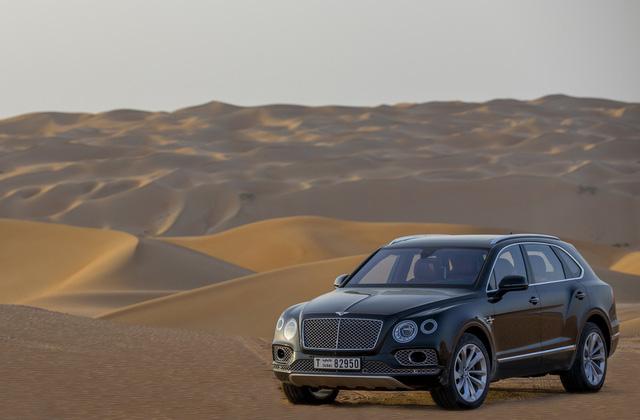 Nhà giàu Trung Đông mua hẳn Bentley Bentayga phiên bản giới hạn phục vụ thú... chơi chim - Ảnh 4.