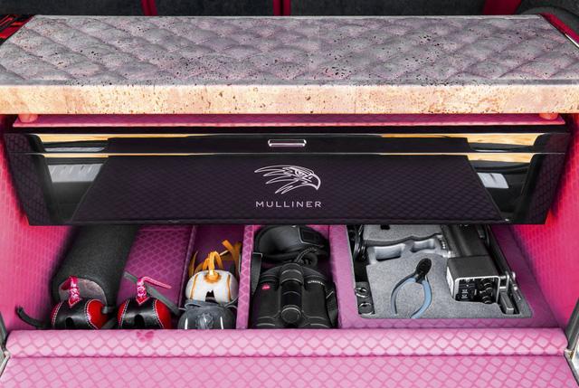 Nhà giàu Trung Đông mua hẳn Bentley Bentayga phiên bản giới hạn phục vụ thú... chơi chim - Ảnh 5.