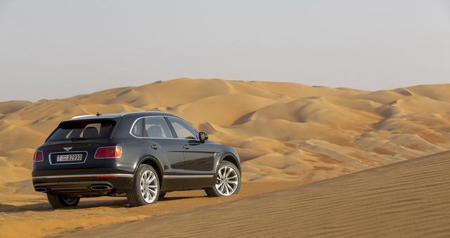 Nhà giàu Trung Đông mua hẳn Bentley Bentayga phiên bản giới hạn phục vụ thú... chơi chim - Ảnh 14.