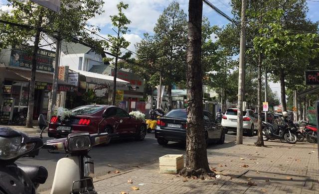 Dàn xe khủng biển đẹp tham gia rước dâu tại Đồng Nai - Ảnh 8.