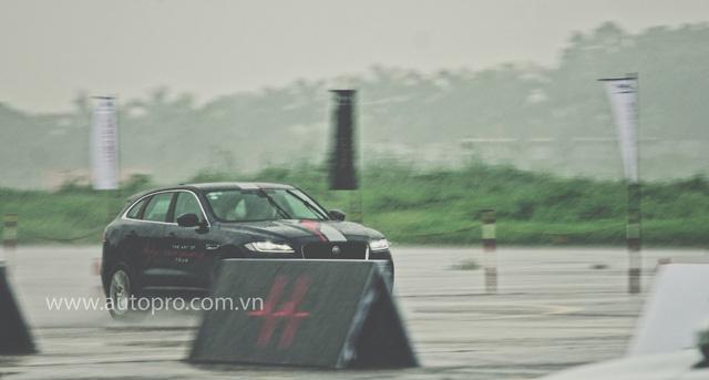 Tắm mưa cùng xe thể thao hạng sang Jaguar - Ảnh 6.