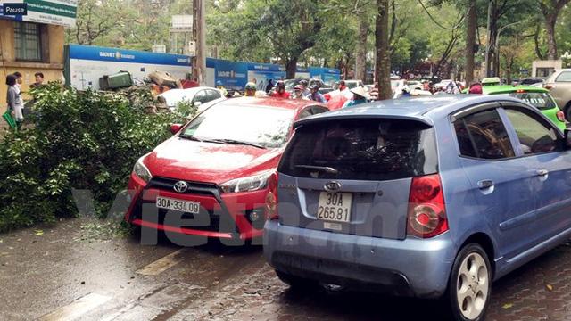 Hà Nội: Gió to làm cây đổ đè bẹp ôtô trên phố Phan Huy Chú - Ảnh 4.