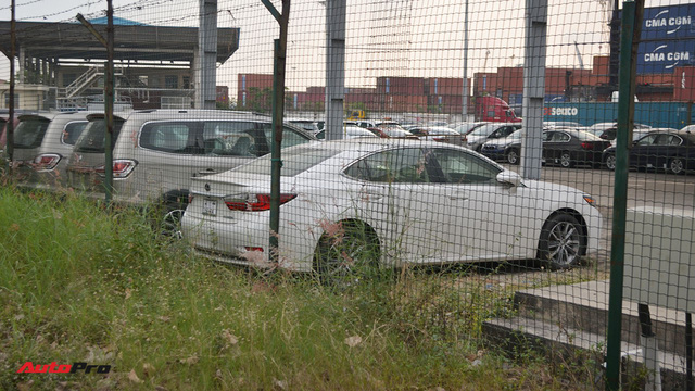 Ngoài BMW, hàng loạt ô tô nhập khẩu và lắp ráp chen chân tại cảng VICT dịp cuối năm - Ảnh 3.