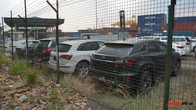 Ngoài BMW, hàng loạt ô tô nhập khẩu và lắp ráp chen chân tại cảng VICT dịp cuối năm - Ảnh 4.