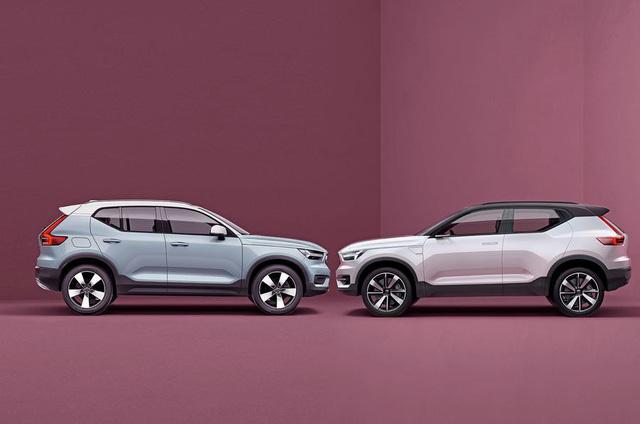 Volvo ấp ủ dòng xe hoàn toàn mới - Ảnh 1.