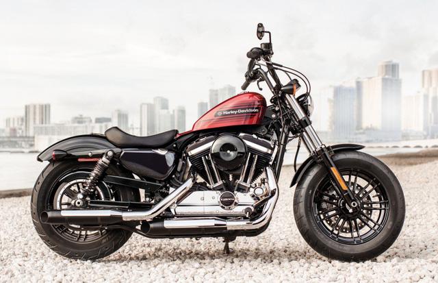 Harley-Davidson ra mắt Forty-Eight Special và Iron 1200 hoàn toàn mới - Ảnh 2.