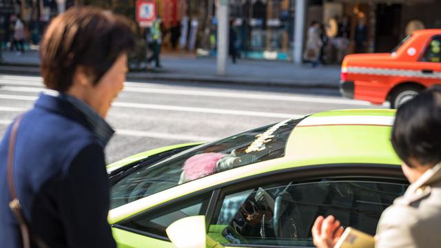 Torako - cô mèo có cuộc sống vương giả trên Lamborghini Gallardo - Ảnh 5.
