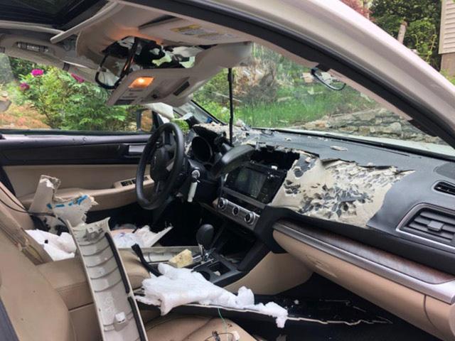 Quên khóa cửa xe, chủ xe méo mặt vì bị gấu lẻn vào phá tan nội thất - Ảnh 3.