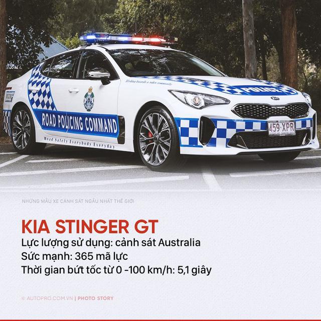 Những siêu xe ngành ngầu nhất của cảnh sát thế giới - Ảnh 1.