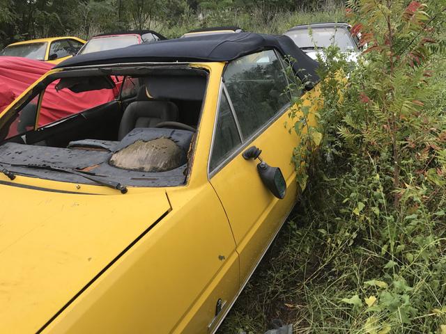 Câu chuyện gây tăng xông đằng sau bãi đỗ hoang nơi Ferrari chất đống không người chăm sóc - Ảnh 7.