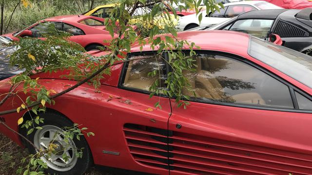 Câu chuyện gây tăng xông đằng sau bãi đỗ hoang nơi Ferrari chất đống không người chăm sóc