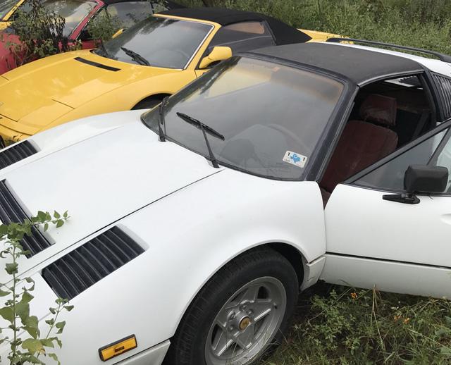 Câu chuyện gây tăng xông đằng sau bãi đỗ hoang nơi Ferrari chất đống không người chăm sóc - Ảnh 3.